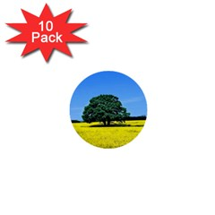 Tree In Field 1  Mini Buttons (10 Pack)