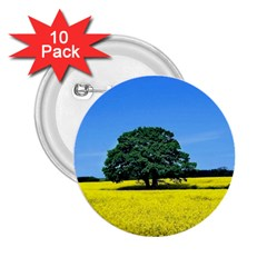 Tree In Field 2 25  Buttons (10 Pack)