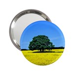 Tree In Field 2.25  Handbag Mirrors Front