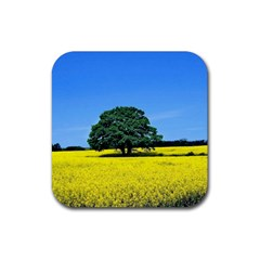 Tree In Field Rubber Square Coaster (4 Pack)  by Alisyart