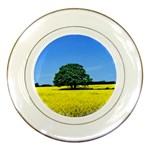 Tree In Field Porcelain Plates Front