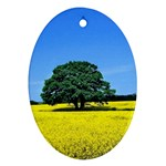 Tree In Field Oval Ornament (Two Sides) Front