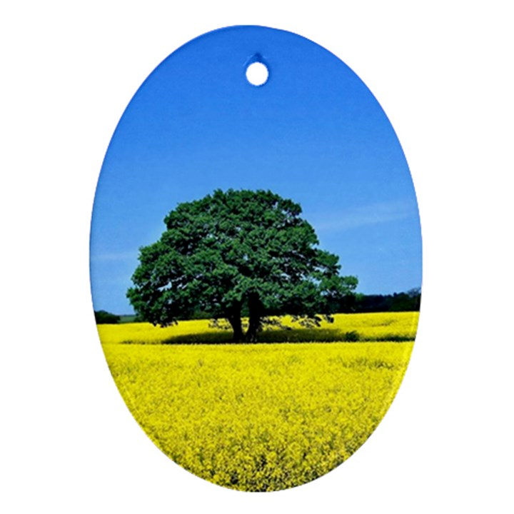 Tree In Field Oval Ornament (Two Sides)
