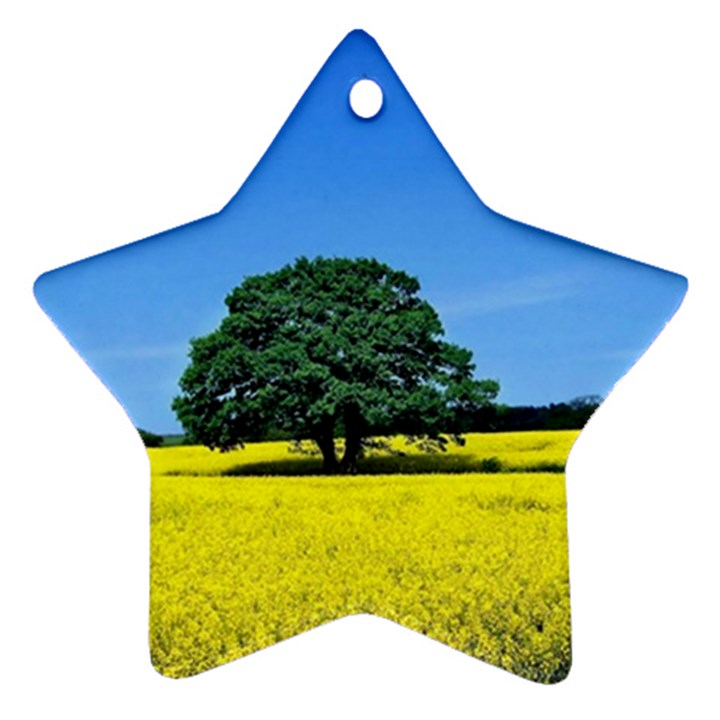 Tree In Field Star Ornament (Two Sides)