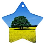 Tree In Field Star Ornament (Two Sides) Back