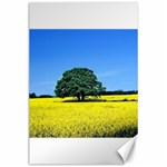 Tree In Field Canvas 24  x 36  36 x24 Canvas - 1