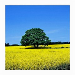 Tree In Field Medium Glasses Cloth