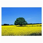 Tree In Field Large Glasses Cloth (2-Side) Back