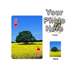 Tree In Field Playing Cards 54 (Mini) Front - Heart5