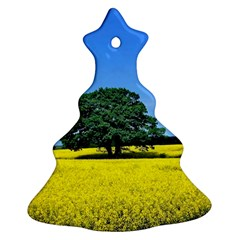 Tree In Field Ornament (christmas Tree)
