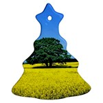 Tree In Field Ornament (Christmas Tree)  Front