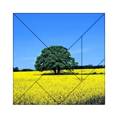 Tree In Field Acrylic Tangram Puzzle (6  X 6 )
