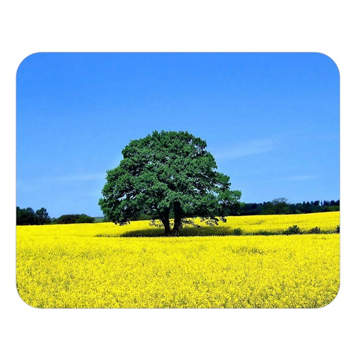 Tree In Field Double Sided Flano Blanket (Large)