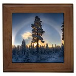 Winter Sunset Pine Tree Framed Tiles Front