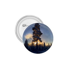 Winter Sunset Pine Tree 1 75  Buttons