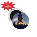 Winter Sunset Pine Tree 1.75  Magnets (10 pack)  Front