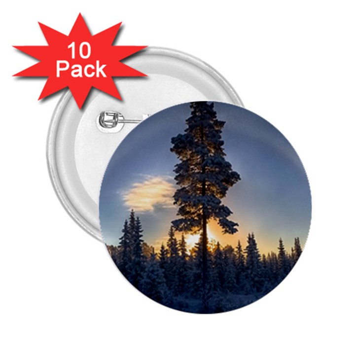 Winter Sunset Pine Tree 2.25  Buttons (10 pack)