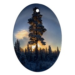 Winter Sunset Pine Tree Oval Ornament (two Sides)