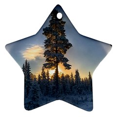 Winter Sunset Pine Tree Star Ornament (two Sides)