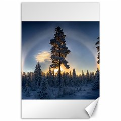 Winter Sunset Pine Tree Canvas 24  X 36
