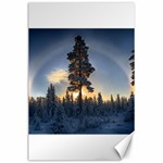 Winter Sunset Pine Tree Canvas 24  x 36  36 x24 Canvas - 1