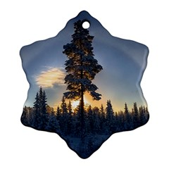 Winter Sunset Pine Tree Snowflake Ornament (two Sides)