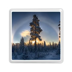 Winter Sunset Pine Tree Memory Card Reader (square)