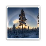 Winter Sunset Pine Tree Memory Card Reader (Square) Front