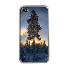 Winter Sunset Pine Tree Apple Iphone 4 Case (clear)