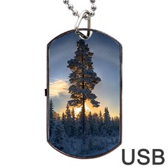 Winter Sunset Pine Tree Dog Tag Usb Flash (one Side)