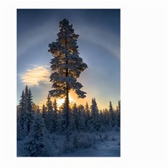 Winter Sunset Pine Tree Large Garden Flag (two Sides)