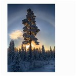 Winter Sunset Pine Tree Large Garden Flag (Two Sides) Back
