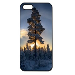 Winter Sunset Pine Tree Apple Iphone 5 Seamless Case (black)