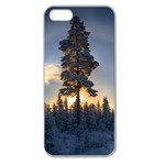 Winter Sunset Pine Tree Apple Seamless iPhone 5 Case (Clear) Front