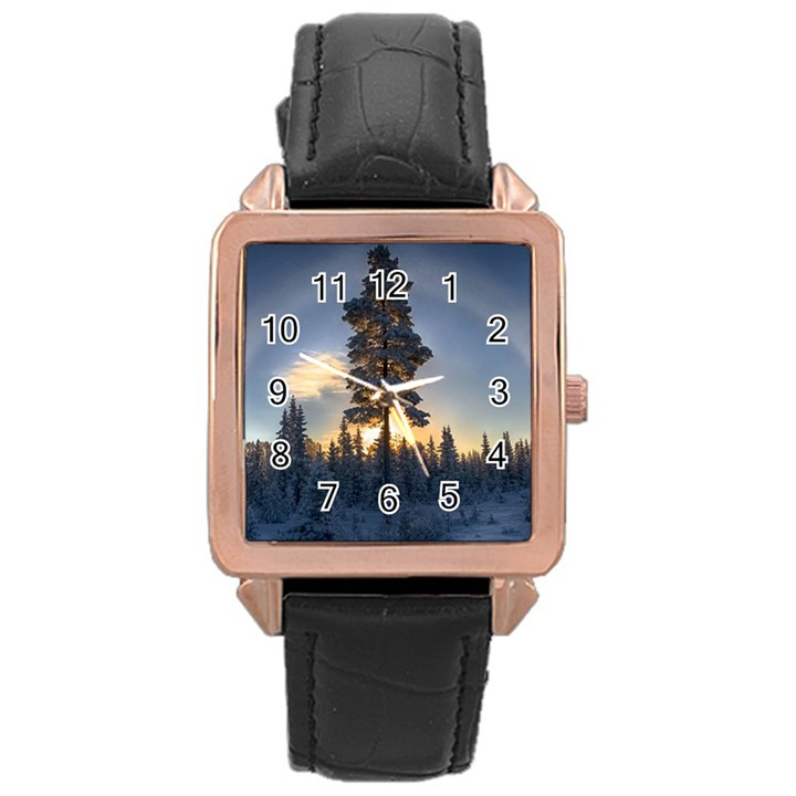 Winter Sunset Pine Tree Rose Gold Leather Watch