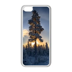 Winter Sunset Pine Tree Apple Iphone 5c Seamless Case (white) by Alisyart