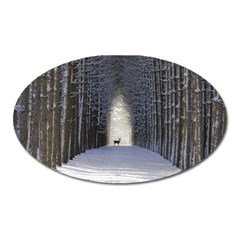 Trees Nature Snow Deer Landscape Winter Oval Magnet by Alisyart