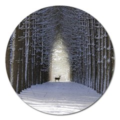 Trees Nature Snow Deer Landscape Winter Magnet 5  (round) by Alisyart
