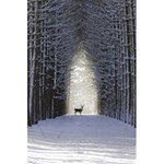 Trees Nature Snow Deer Landscape Winter 5.5  x 8.5  Notebook Back Cover
