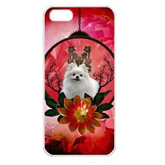 Cute Pemeranian With Flowers Apple Iphone 5 Seamless Case (white) by FantasyWorld7
