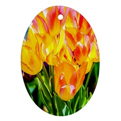 Festival Of Tulip Flowers Ornament (oval) by FunnyCow