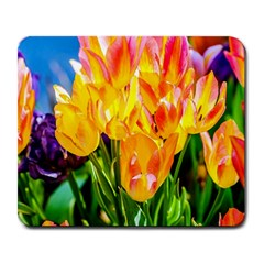 Festival Of Tulip Flowers Large Mousepads by FunnyCow