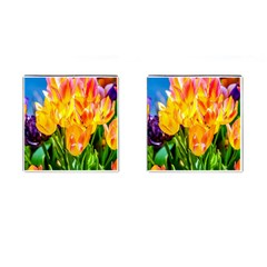 Festival Of Tulip Flowers Cufflinks (square) by FunnyCow