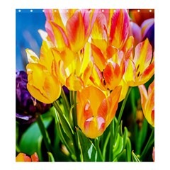 Festival Of Tulip Flowers Shower Curtain 66  X 72  (large)  by FunnyCow
