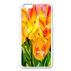 Festival Of Tulip Flowers Apple Iphone 6 Plus/6s Plus Enamel White Case by FunnyCow