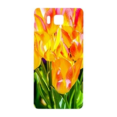 Festival Of Tulip Flowers Samsung Galaxy Alpha Hardshell Back Case
