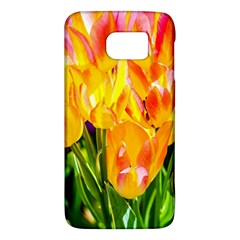 Festival Of Tulip Flowers Samsung Galaxy S6 Hardshell Case  by FunnyCow
