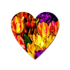 Fancy Tulip Flowers In Spring Heart Magnet by FunnyCow
