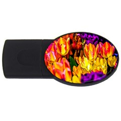 Fancy Tulip Flowers In Spring Usb Flash Drive Oval (4 Gb) by FunnyCow