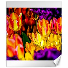 Fancy Tulip Flowers In Spring Canvas 8  X 10  by FunnyCow